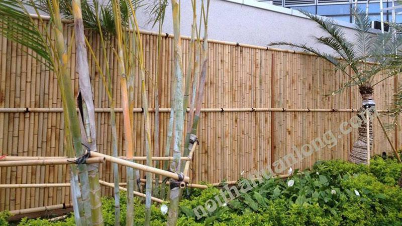 Hàng rào tre trúc 2