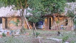 Nhà tre trúc lợp mái lá cọ 2