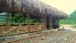 Nhà tre trúc lợp mái lá cọ 5